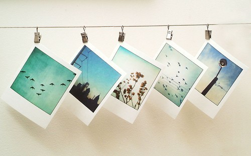Fotos Polaroid Tumblr El Semanario Sin Límites