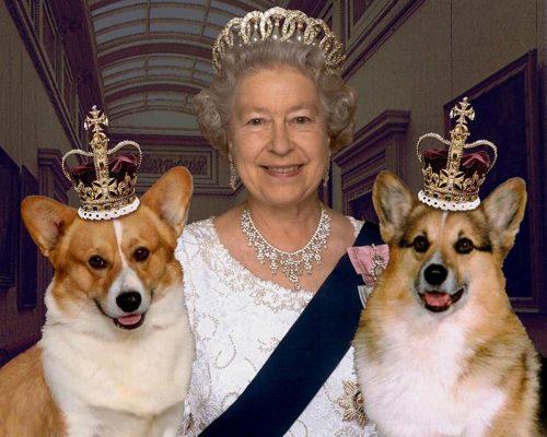 Reina Isabel II y mascotas