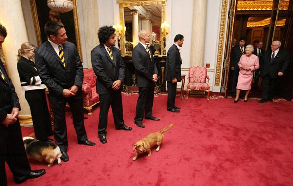 Reina Isabel II y mascotas.
