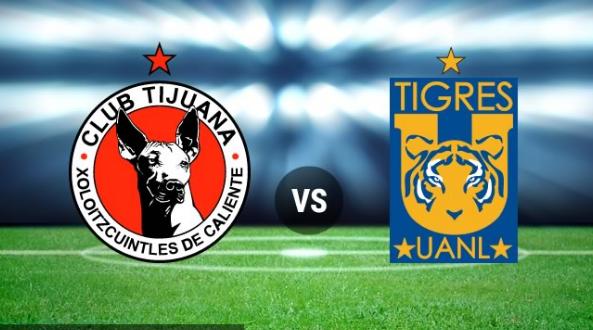 Lucas Zelarayán volvió a hacer un gol en Tigres