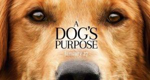 Cancelan estreno de A Dog's Purpose por maltrato animal