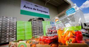 Ante los nuevos restos que enfrenta el entorno comercial, México busca consolidar acuerdos con Argentina para exportaciones agrícolas.