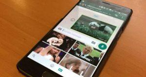 WhatsApp integra la búsqueda de GIFs en los dispositivos Android/smartphone/apps