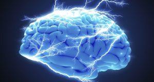 Científicos se encuentran investigando el origen de la conciencia