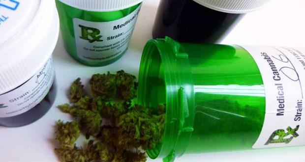 Universidades británicas inician estudios sobre los beneficios médicos de la mariguana