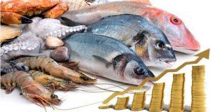 pescados precios