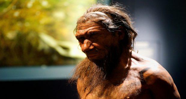 Los chimpancés son los parientes vivos más cercanos de los seres humanos, pero se ha debatido durante años por antropólogos en donde vivió el último ancestro chimpancé-humano