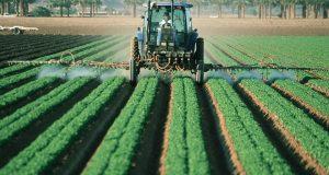 México y Estados Unidos buscan trabajo conjunto en materia de agricultura / Sagarpa. Como parte de las negociaciones de cooperación entre ambos países, México y Estados Unidos buscan trabajo conjunto en materia de agricultura.