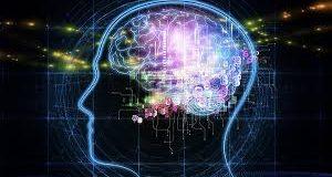 Prueba de memoria: test científico para medir la memoria VIDEO