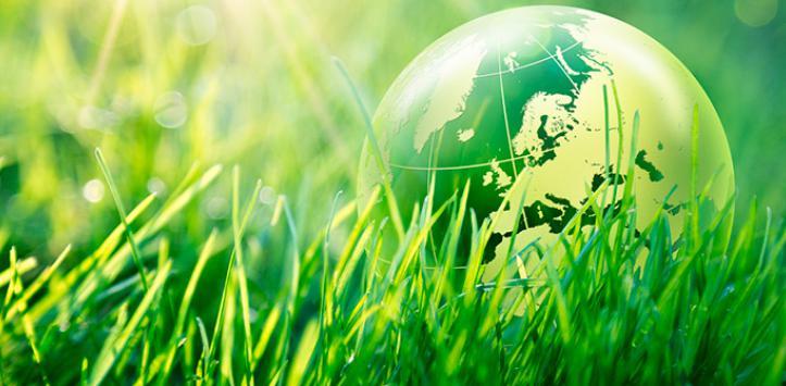 D a mundial del medio ambiente 2017 formas de cuidar el - Como humidificar el ambiente ...