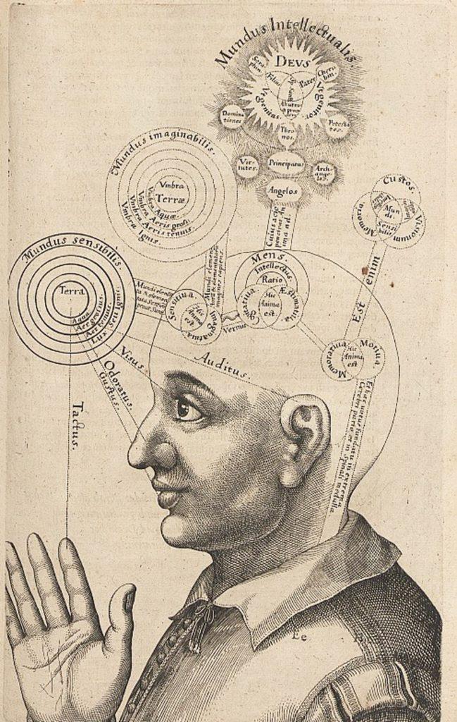 La teoría cavitaria: la mente en las cavidades del seso | El Semanario