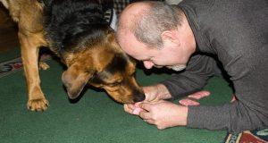 Las personas que tienen una mascota obtienen hasta 22 minutos adicionales de ejercicio diario