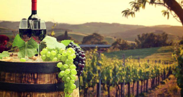 Vino en México estadísticas: industria busca conquistar mercado nacional México y el mundo . El sector vinícola enciende los reflectores en México al registrar buenos números de crecimiento en producción y calidad a nivel nacional e internacional, sumando más de mil etiquetas de vino de producción nacional. El dinamismo de la industria vinícola en México ha despertado el interés de inversionistas y, de acuerdo a datos del Consejo Mexicano Vitivinícola, la producción alcanzó alrededor de 20 millones de litros en 2015, con un aumento del 8% anual del consumo de vino mexicano entre 2013 y 2016. A pesar de que en temas de importación de vino, el mercado mexicano tiene aún mucho terreno que conquistar, las principales zonas de producción de uva: Baja California, Coahuila y Querétaro; cada año se suman más estados productores como Chihuahua, Guanajuato, Aguascalientes, Zacatecas, San Luis Potosí, Puebla, Sonora y Nuevo León; en suma destinan 5 mil hectáreas al cultivo de la vid.