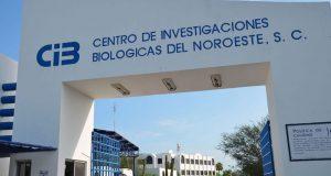 Centro de Investigaciones Biologicas del Noroeste