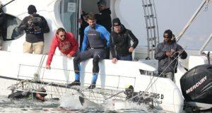 El campeón olímpico Michael Phelps compitió contra un tiburón blanco