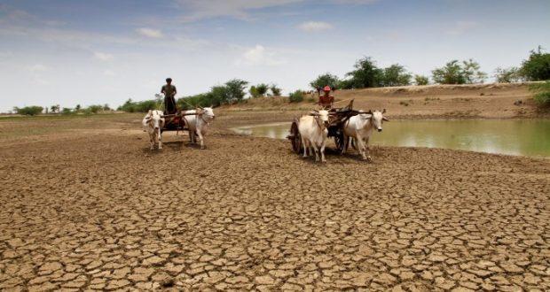 Científicos advierten que el cambio climático afectará principalmente la región Asia-Pacífico