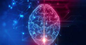 Investigadores aseguran que es falso que únicamente usemos el 10% de nuestro cerebro