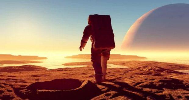 La NASA planea usar hongos para salvar a quienes exploren otros planetas