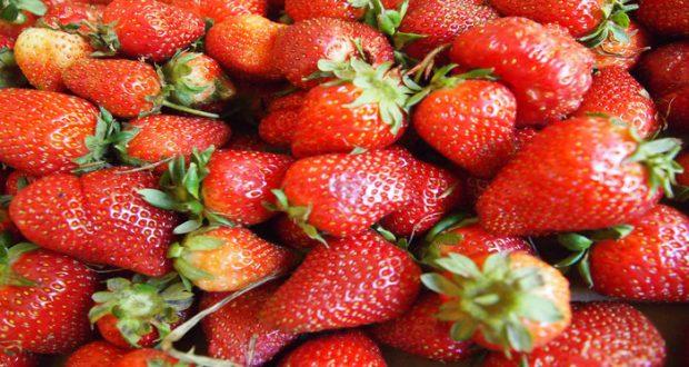 Un compuesto en la fruta, conocido como fisetina, reduce el deterioro cognitivo y la inflamación en ratones, según un estudio.