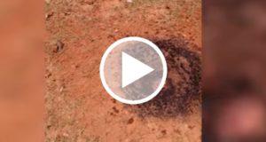 Graban el daño que provocó un meteorito al caer en el patio de una casa