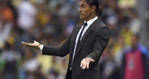 Los Pumas cesan como director técnico a su director técnico Francisco Palencia