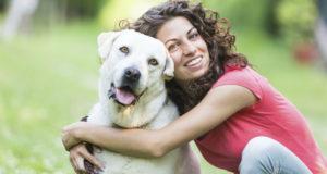 el perro puede ser más leal que un humano
