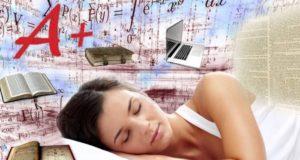 Investigadores aseguran que es posible aprender mientras dormimos