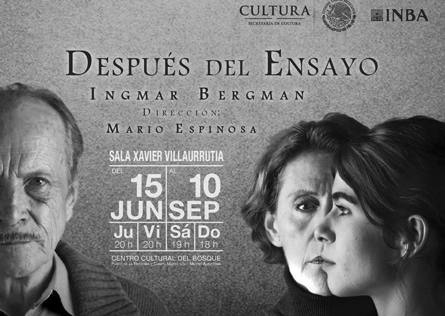 Despues del Ensayo-Bergman