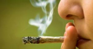 La marihuana se ha catalogado como una droga dañina para la comunicdad, pero recientemente, diversos países ya la están aprobando ¿es realmente letal para la sociedad?