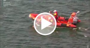 Graban el rescate de un perro que estuvo una hora nadando en mar abierto