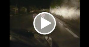 Video de conductor acosando a dos osos indigna a las redes sociales