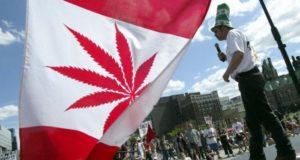 impuesto canada marihuana