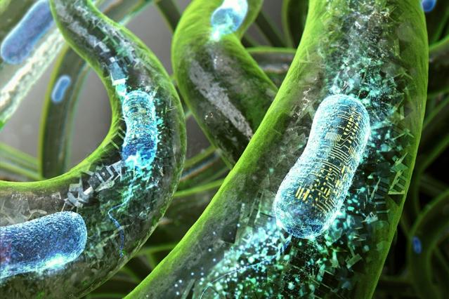 """A través de una nueva técnica de impresión en 3D, el Instituto Tecnológico de Massachusetts (MIT), desarrolló el primer tatuaje viviente hecho con células de bacterias, programadas para reaccionar ante diferentes estímulos y """"cobrar vida"""" encendiendo la tinta que lo conforma."""