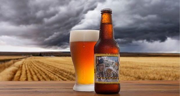 Cervezas mexicanas pueden ser afectadas por denominaciones de origen europeas, ya que muchas marcas nacionales que fabrican líquido con estilos parecidos no podrían venderse en esa región del mundo.