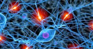 Neurobiólogo mexicano desarrolla técnica para reprogramar neuronas lesionadas