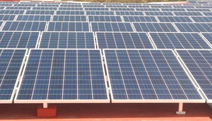 paneles solares bimbo