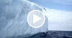 Colombiano realiza varios clavados desde la cima de un iceberg [Video]