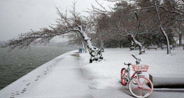 Costa este de Estados Unidos paralizada por la tormenta de nieve 'Toby'