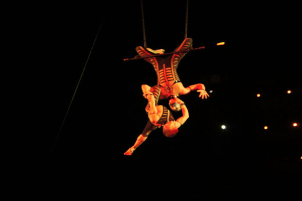 Un artista del Cirque du Soleil murió después de caer al escenario durante una rutina aérea en Tampa, Florida, la noche del sábado.