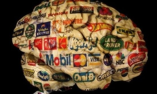 cerebro del consumidor