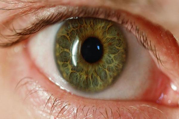 Una cura para la causa más común de ceguera podría estar disponible en cinco años, luego de que dos pacientes recuperaran la visión gracias a una revolucionaria terapia.
