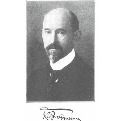 Broadmann