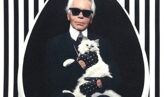Karl Lagerfel y su gato