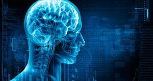 ejercicio_cerebro