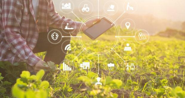 Blockchain en la Agricultura.