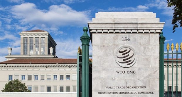 OMC G20