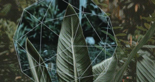 Ecoosfera.