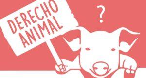 Derecho animal.