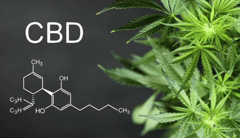 CBD marihuana
