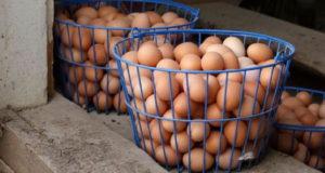 huevo_colesterol